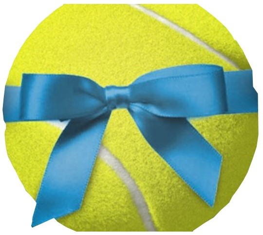 Gift vouchers tiger tennis adelaide australia stuck for a gift idea tennis coaching gift vouchers are the perfect way to treat that special someone to learning a skill that will last forever yadclub Choice Image